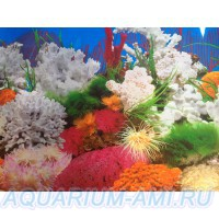 фон для аквариумам5а