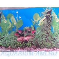 фон для аквариума 6а