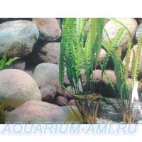 фон для аквариума 11