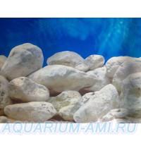 фон для аквариума 12