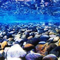 Фон для аквариума №2