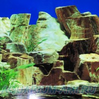 Фон для аквариума №20