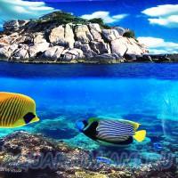 Фон для аквариума №9