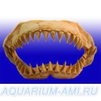 Декор челюсти динозавра №1003