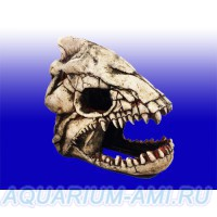 Грот скелет рыбы №902