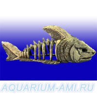 Скелет рыбы большой №999