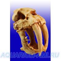 Декор череп динозавра №1005