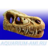 Череп динозавра №1004