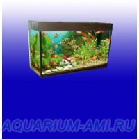 Аквариум АКВАС 170 литров