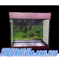 Аквариум Зеленоградский 50