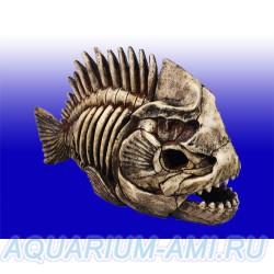 Скелет рыбы для декорации в аквариум №903