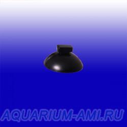 Присоски для внутренних фильтров FAN2,FAN3,водонагревателей AQUAEL  21