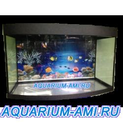 Аквариум Зелаква панорама 600 литров