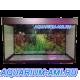 ZelAqua аквариум прямоугольный 200 литров