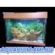 Зеленоградский аквариум прямоугольный 130