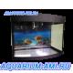 Зеленоградский аквариум панорама 100